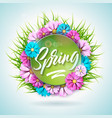 spring nature design with beautiful colorful vector image