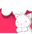 White cute little kitty baby red backdrop vector image vector image