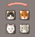 Animal Portrait With Flat Design Cats vector image vector image