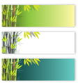 bamboo flyers set vector image vector image