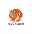 duck pintail sunset vector image vector image