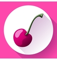 Fruit cherry icon flat style vector image vector image