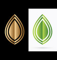 luxury leaf vector image