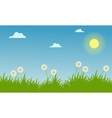 Landscape of spring with beauty flower vector image