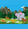 animals run in the nature vector image vector image