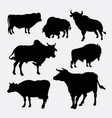 bison cow and bull animal silhouette vector image vector image