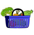 fresh vegetables lie in a plastic basket vector image