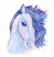 horse drawn watercolor vector image vector image