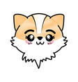 isolated cute fox face vector image vector image
