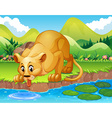 Lion drinking water in the pond vector image vector image
