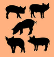 pigs silhouette vector image vector image