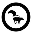 skunk black icon in circle vector image vector image