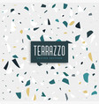 terrazzi stone texture background design vector image