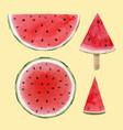 watercolor watermelon set vector image vector image