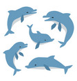 cute dolphins in different poses vector image vector image