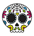 day of the dead sugar skull colorful floral vector image vector image