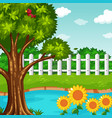garden scene with pond and flowers vector image