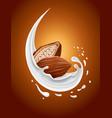 milk splash with cacao nut vector image