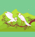 pair of storks on a branch vector image vector image
