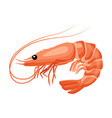 shrimp icon in flat style fresh sea food vector image vector image