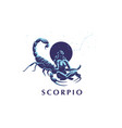 sign of the zodiac scorpio vector image