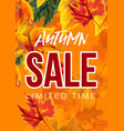 vivid poster with autumn sale advertisement vector image