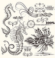 collection of hand drawn sea elements vector image vector image
