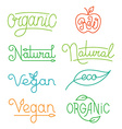 labels and logos in trendy mono line style vector image