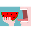 Man eating watermelon fruit consumption Red fresh vector image vector image