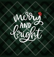 merry and bright hand lettering christmas vector image