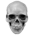 skull halfton fas vector image