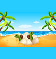 baby sea turtle hatch on the beach vector image vector image