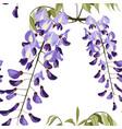beautiful seamless floral summer wisteria pattern