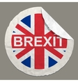 Brexit British referendum concept vector image vector image