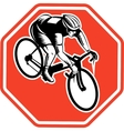 Cyclist racing bike set inside octagon vector image vector image