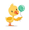 little cartoon duckling character holding blue vector image vector image