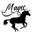 Magic phrase on unicorn