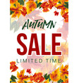 modern design of autumn sale poster vector image