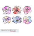 set of watercolor flower elements vector image vector image