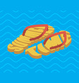 summer time slippers lettering beach shoes vector image vector image