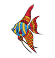 isolated freshwater angelfish aquarium fish vector image