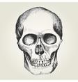Sketch of a human skull vector image