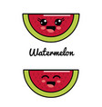 emblem kawaii happy and scared watermelon icon vector image vector image