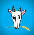 goat with ears of wheat in the mouth vector image vector image