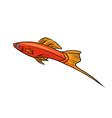 isolated swordtail aquarium fish vector image vector image