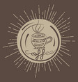 pattern coffee ethnic vector image