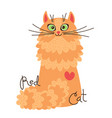 red-headed cat character of a red kitten vector image vector image
