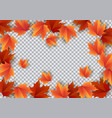 autumn leaves bright colourful autumn oak leaves vector image