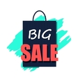 Big sale poster flat icon vector image vector image