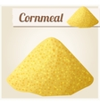 Cornmeal Detailed Icon vector image vector image